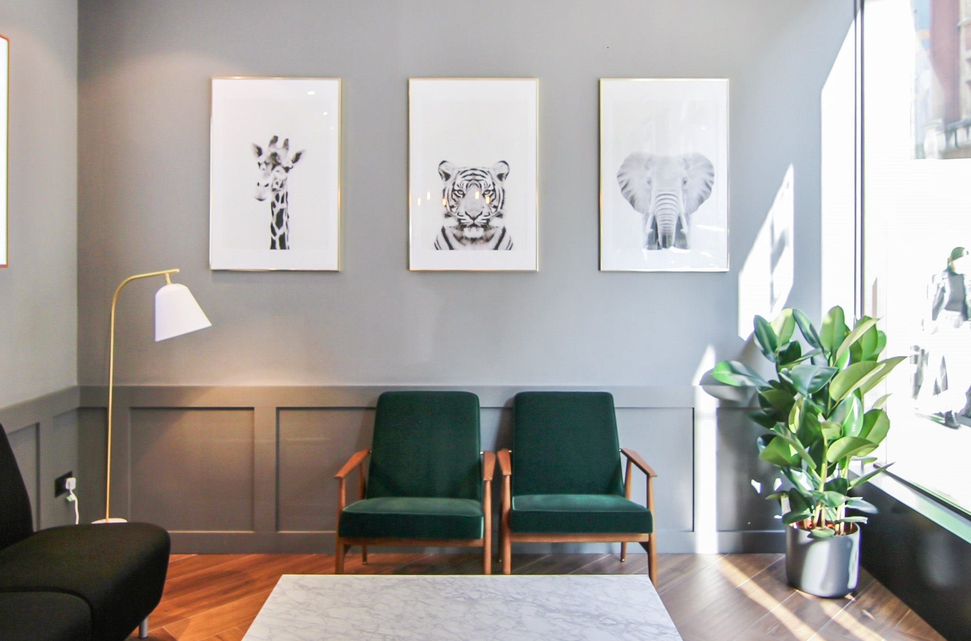 black and white animal images hanging on a wall