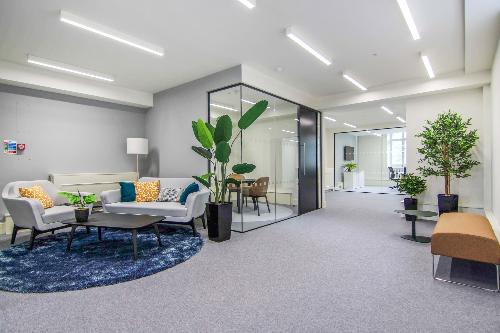 office with plants and cubicle meeting rooms