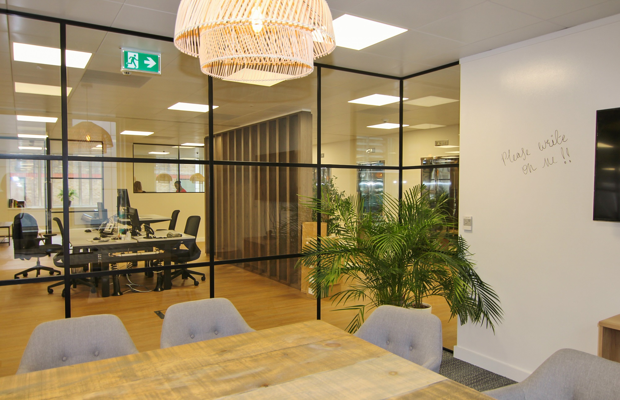 indoor plants located within office glass cubicle
